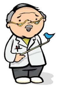 SME-Professor