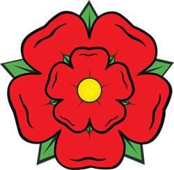Lancashire Rose Resized